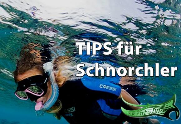 Schnorchler Tips
